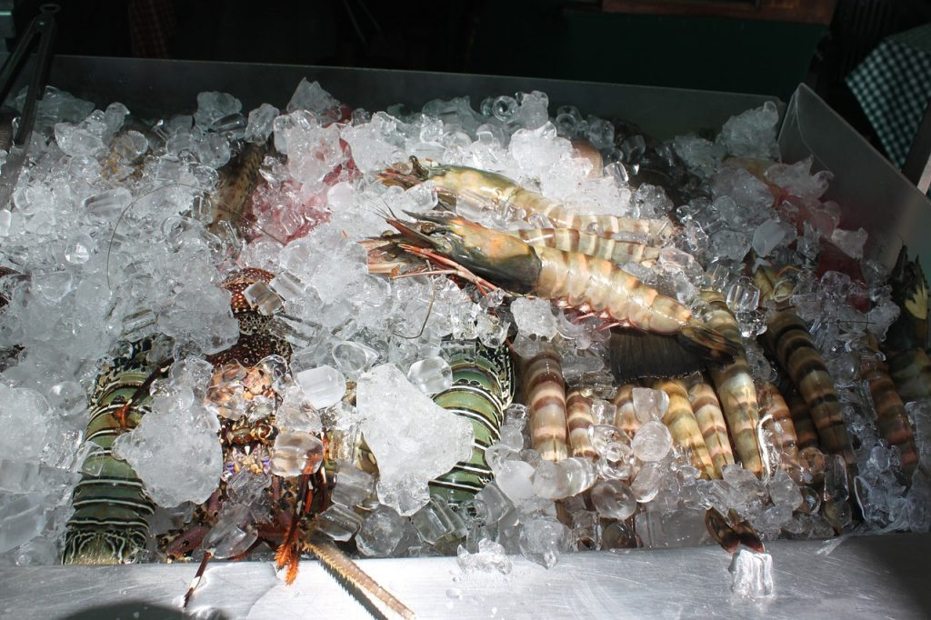 Exploring Boracay - shrimp