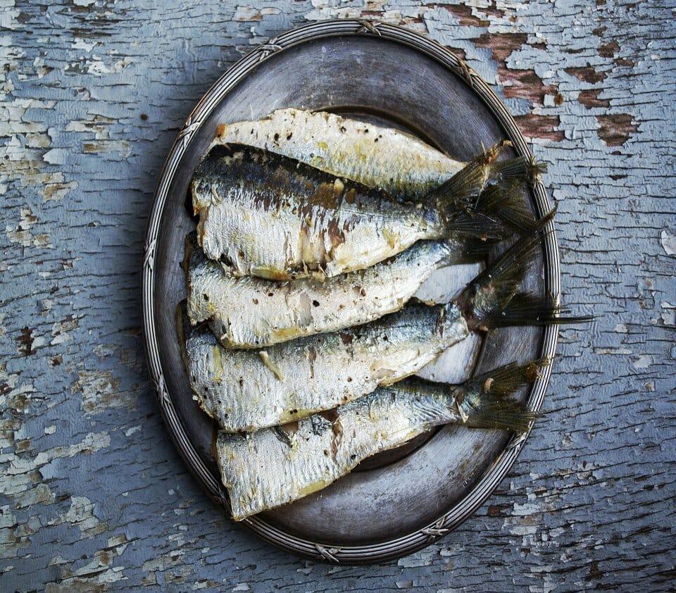 Sardinia summer - seafood