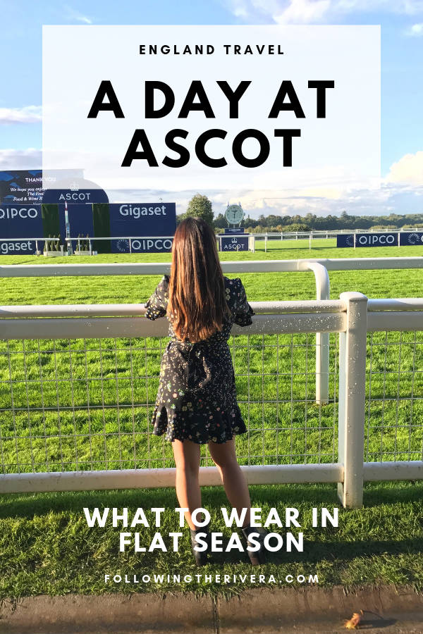 What to expect when visiting Ascot Racecourse during Flat Season 1