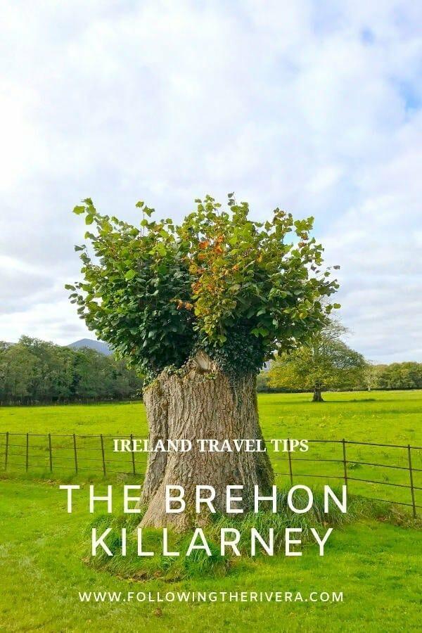 The Brehon Hotel Killarney Ireland 4