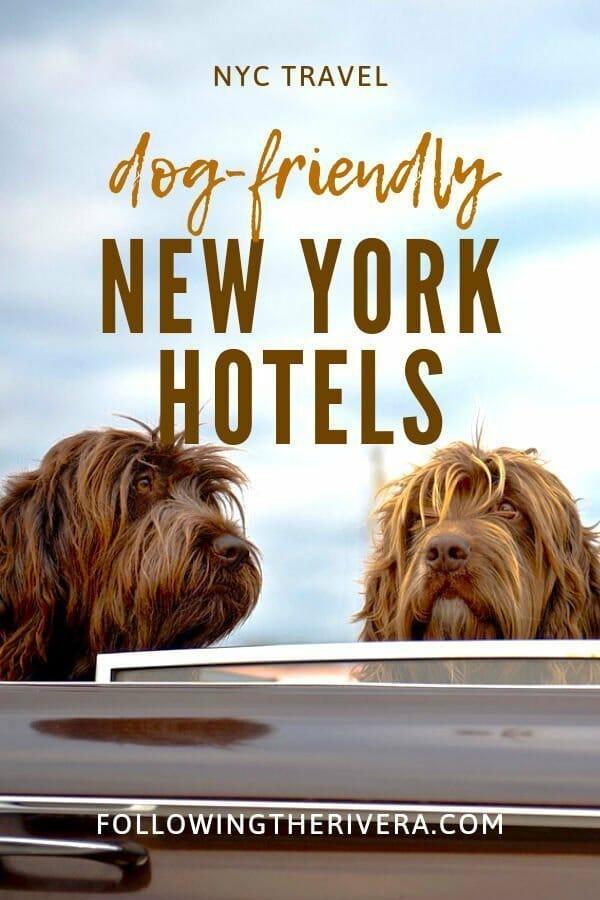 NYC Dog-friendly hotels — the Crosby Street Hotel 2