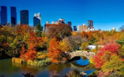 New York in the fall | 4 top ideas