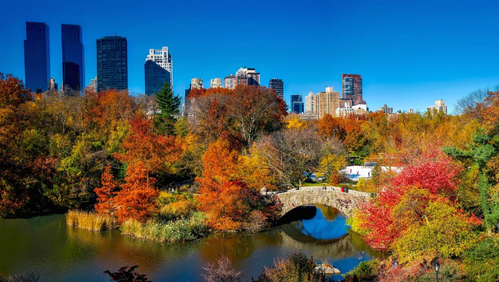 4 top ideas for enjoying New York in fall