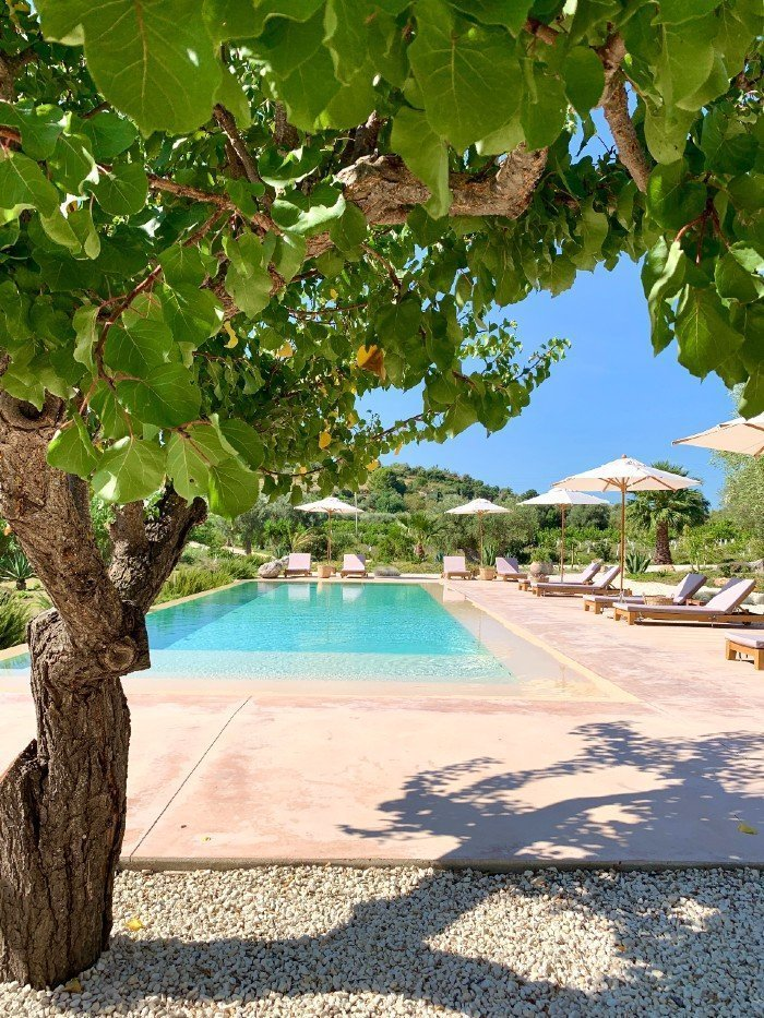 IUTA swimming pool and tree - glamping in Sicily