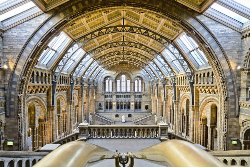 Inside the incredible Natural History Museum