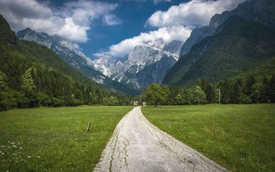Going green in Slovenia: 10 of the most picturesque tourist farms