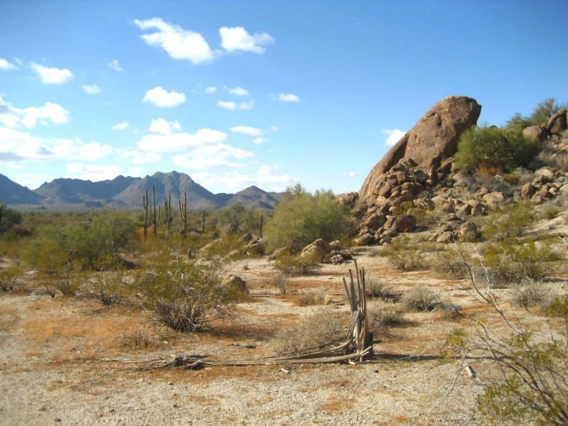 Sonoran Desert — wellness holidays
