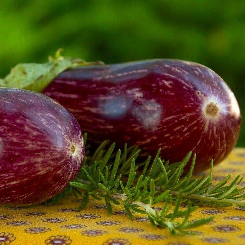 Melanzane alla Sassarese — Sassari eggplants in 40 minutes 2