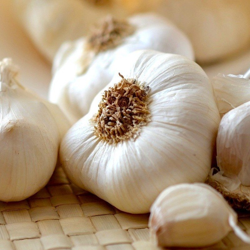 Melanzane alla Sassarese — Sassari eggplants in 40 minutes 3