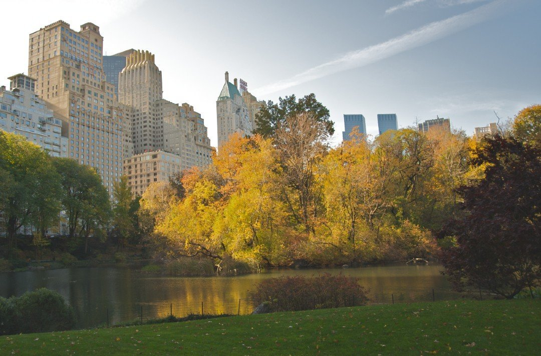Central Park Autumn NYC - Airbnb in NYC