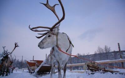 20 best Christmas cities in Europe