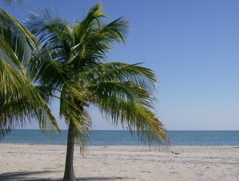 Crandon Park beach - warm places to visit in February in USA